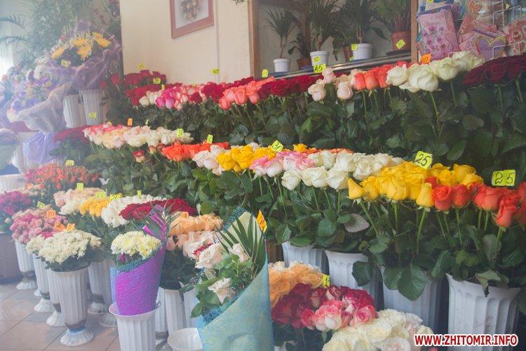 Киевская область калиновка-цветы оптом, цветов