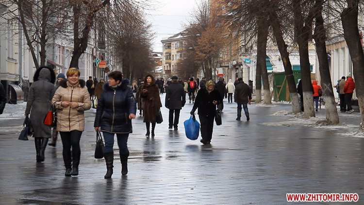 oy oy 06 - З бюджету Житомира планують виділити 15 млн грн на придбання техніки для прибирання доріг і тротуарів