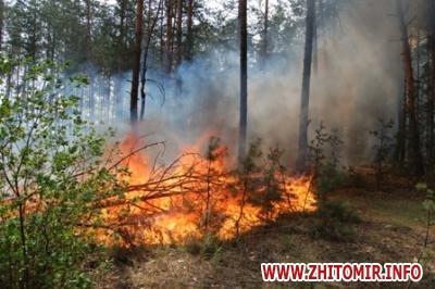 2017 05 04btgfr w440 h290 - В Україні у 5 разів збільшили штрафи за порушення правил пожежної безпеки в лісах