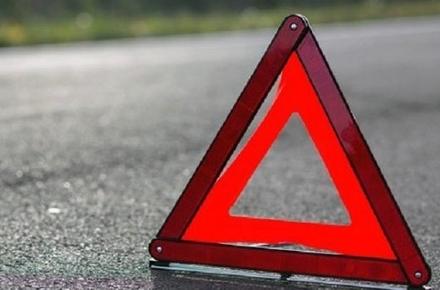 2017 05 04101694 w440 h290 - У Житомирській області водій Renault не впорався з керуванням та збив чоловіка, який стояв біля дороги