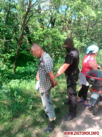 konopli pol 3 - У Житомирській області поліцейські купували партії коноплі, щоб потім затримати продавців