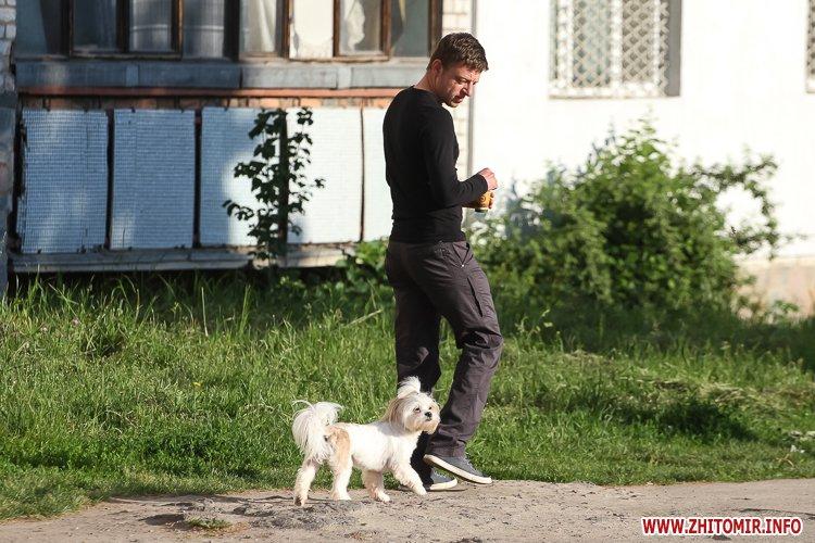 Vigyl sobak 08 - Яких собак вигулюють зранку житомиряни на Крошні, в сквері та парку. Фоторепортаж