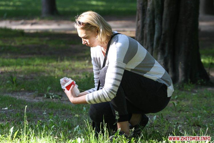 Vigyl sobak 25 - Яких собак вигулюють зранку житомиряни на Крошні, в сквері та парку. Фоторепортаж