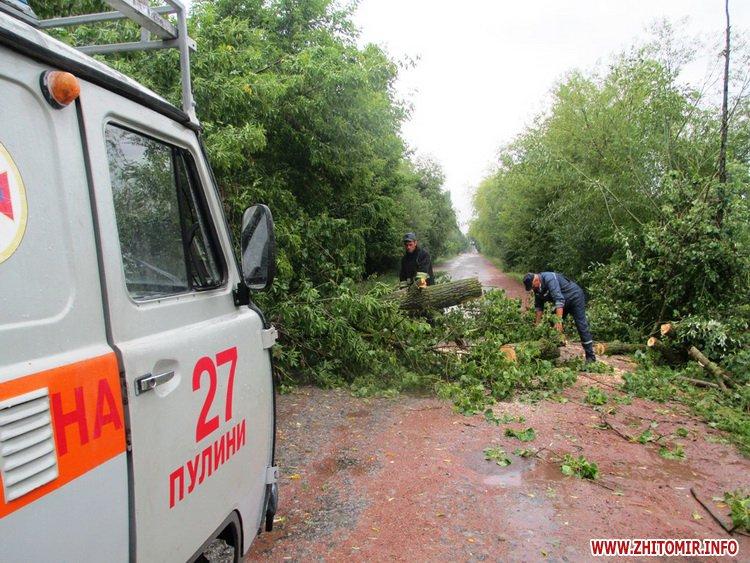 naslidki negoda 2 - Наслідки негоди: у Баранівці дерево впало на дах будинку, а в Пулинському районі – на дорогу