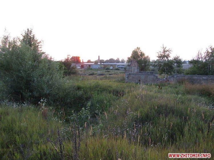 vbiYshy 2 - У Житомирській області випадково знайшли тіла двох чоловіків, убивць вже розшукали