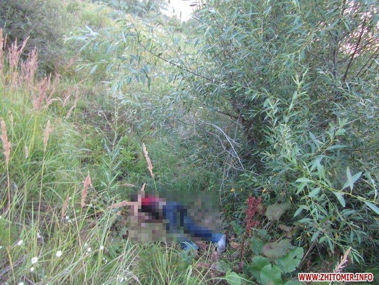 vbiYshy 4 - У Житомирській області випадково знайшли тіла двох чоловіків, убивць вже розшукали