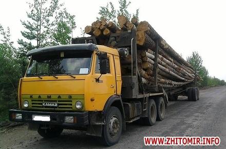 2017 07 251370874010656 bulletin w440 h290 - У Житомирській області з вантажівки на майстра лісу впали зрізані стовбури дерев