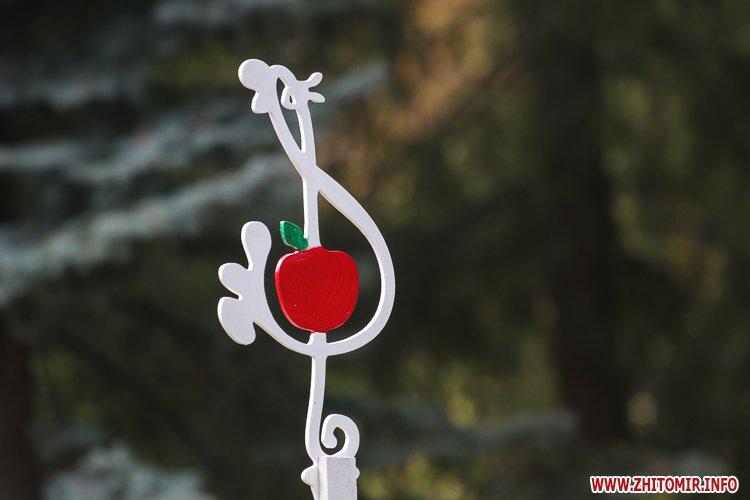 nqnwne 16 - Перший день фестивалю «Пісенний Спас» у житомирському парку культури. Фоторепортаж