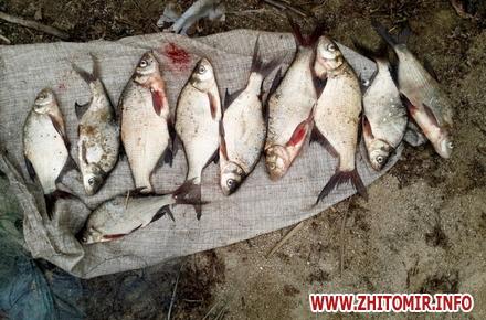 2017 09 13ruboohorona patryl 2 w440 h290 - За 10 днів Житомирський рибоохоронний патруль вилучив на ринках майже 70 кг незаконно добутої риби