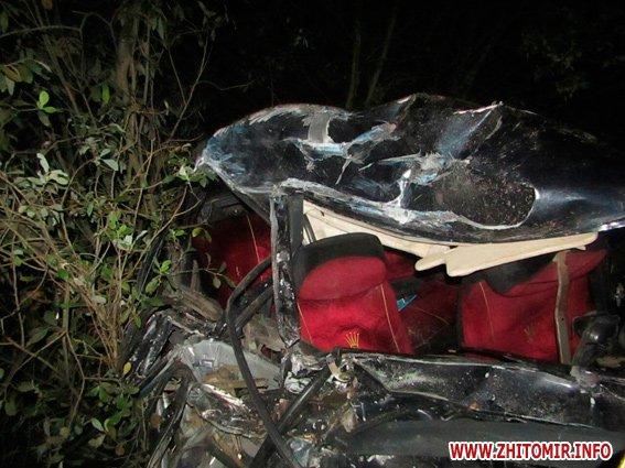 ginZag 3 - У Житомирському районі міжнародний автобус насмерть збив жінку