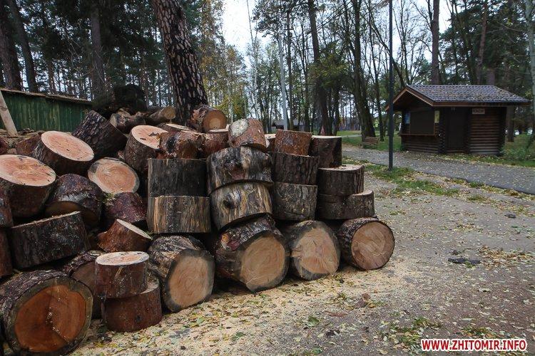 Ropac 14 - Житомирський гідропарк в очікуванні зими. Фоторепортаж
