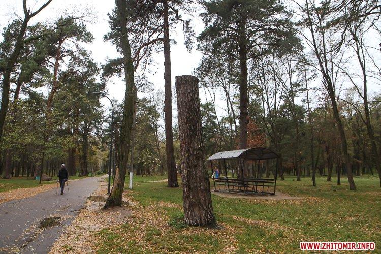 Ropac 16 - Житомирський гідропарк в очікуванні зими. Фоторепортаж