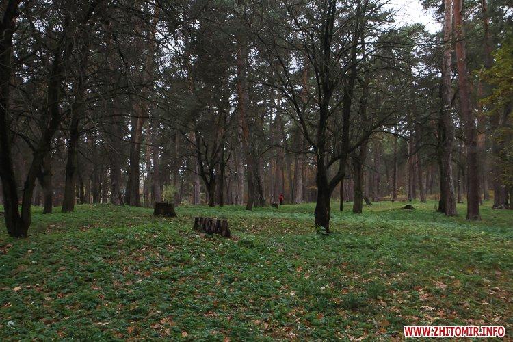 Ropac 38 - Житомирський гідропарк в очікуванні зими. Фоторепортаж