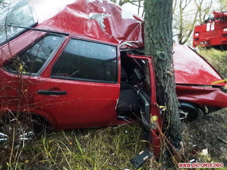 dtpemilchyno465465 2 - У Житомирській області рятувальники витягали «Ладу» з кювету, водій та пасажирка у лікарні