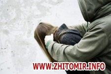 e97c7c4baa1cdd4a2ffec6d3bf5a583c w440 h290 - У Житомирі дядько запропонував підвезти додому племінницю та зґвалтував її