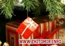 996c15d1b3188e076296b50d4929c7be w440 h290 - Житомирські податківці перед Новим роком нагадали, які подарунки оподатковуються