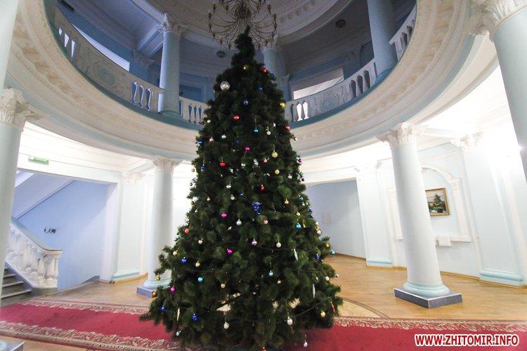 5a404988e62d9 - Депутаты на сессии, Житомир замело снегом, елка и открытие Рождественской ярмарки. Фото недели