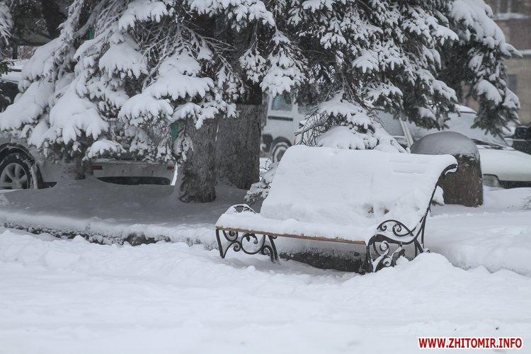 5a4049aab52ec - Депутаты на сессии, Житомир замело снегом, елка и открытие Рождественской ярмарки. Фото недели