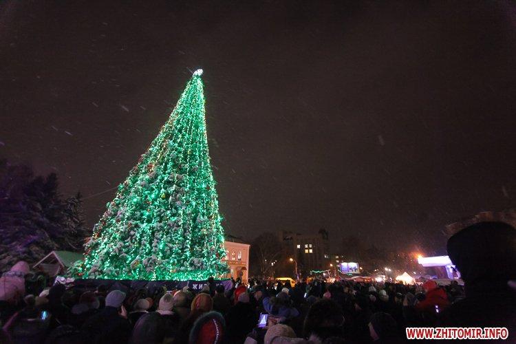 5a4049f311d32 - Депутаты на сессии, Житомир замело снегом, елка и открытие Рождественской ярмарки. Фото недели