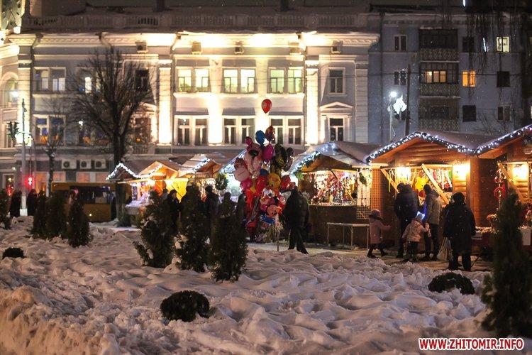5a404a8523934 - Депутаты на сессии, Житомир замело снегом, елка и открытие Рождественской ярмарки. Фото недели