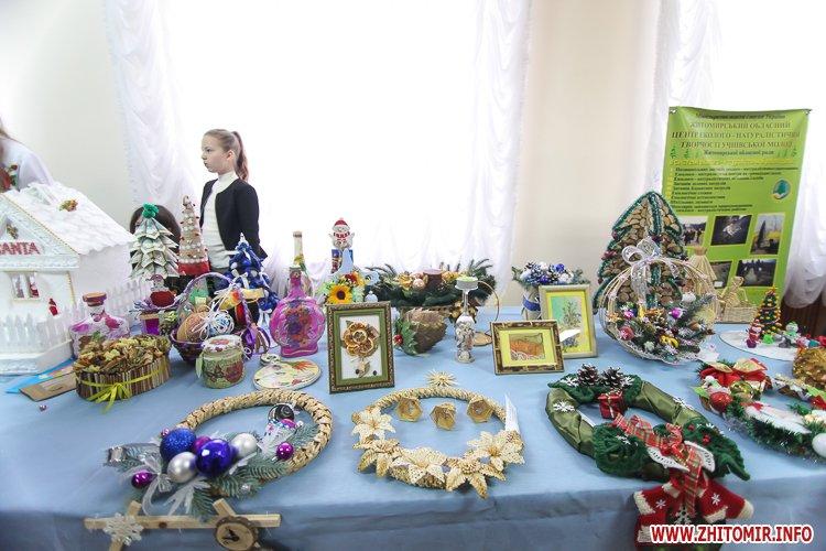 5a404aaa8e1c2 - Депутаты на сессии, Житомир замело снегом, елка и открытие Рождественской ярмарки. Фото недели