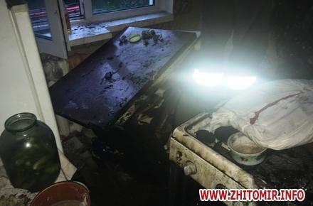 c368a935df3871506ce2e1d0c9e850b1 w440 h290 - Житомирська пенсіонерка забула вечерю на увімкненій плиті: пожежу гасили 11 рятувальників