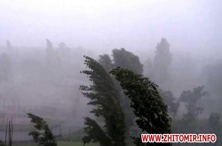 59bc9d5dd50201b936fd797c47df3e45 preview w440 h290 - Через негоду в Житомирській області знеструмлено 20 населених пунктів