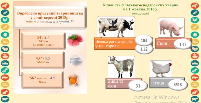 5bea9e9c0b4e1 original w859 h569 - Статистики розповіли, скільки в середньому за рік один житель Житомирської області з'їв картоплі, м'яса та яєць