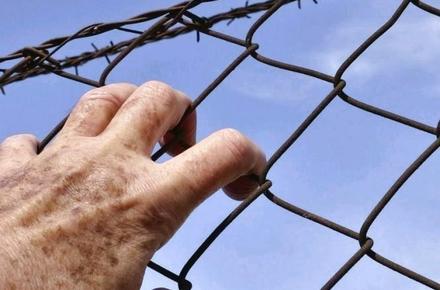 944d2b7f7ed6b4636093f34b9ed5c623 preview w440 h290 - За два роки в Житомирській області 33 засуджених ухилялись від тюрми, 18 з них навіть не шукали