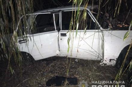3a635d0bd916c88b77adb2c76a486a12 preview w440 h290 - У Житомирській області ВАЗ з трьома підлітками врізався в дерево, 17-річний пасажир помер у реанімації