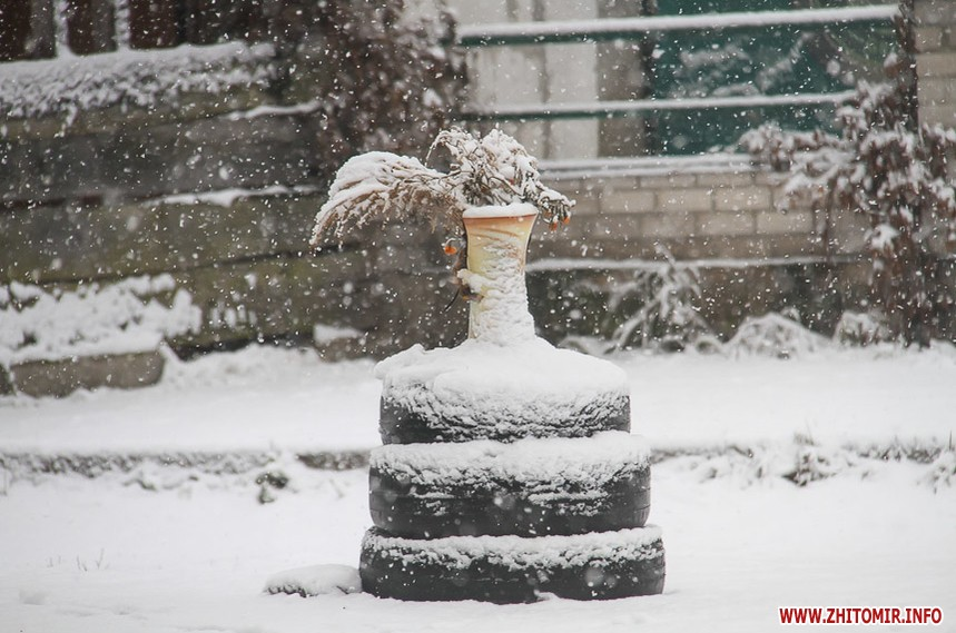 Перший сніг в Житомирі