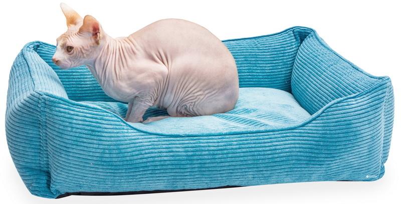 5c506d3d63494 original w859 h569 - Как порадовать домашних питомцев: выбираем удобный лежак