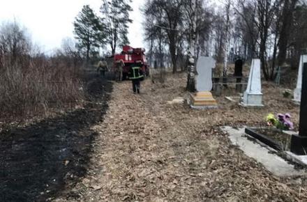 0dea7bfa78944337c67abf33d17a1605 preview w440 h290 - Через вітряну погоду в Житомирській області 20 разів за добу горіла трава, вогонь мало не перекинувся на цвинтар