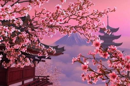 813ec2d8f767af4d50b19d2983a06401 preview w440 h290 - Наприкінці травня у Житомирі планують провести свято «Дні Японії»