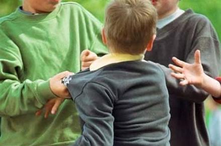 2a2793fe07d0528a9bc3149a3b7de47d preview w440 h290 - Ювенальна превенція Житомирської області склала 5 перших протоколів на учнів та батьків за булінг у школі