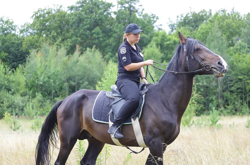 5d30876e98480 original w859 h569 - Перша житомирська поліцейська, яка патрулює парки верхи на Ловеласі й тренує собаку Весту. Фоторозповідь