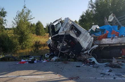 c6a05ce76cbb12668cf67ff3f081cdba preview w440 h290 - У ДТП в Житомирській області загинули водії фур, а BMW на смерть збив пішохода