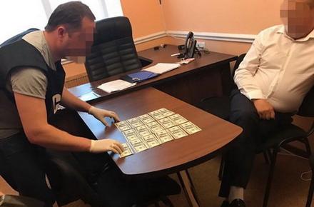 2abd1358d2ae8c9ec80f7e0aeb218add preview w440 h290 - Житомирський суд оштрафував депутата, який давав у ГУНП 1,6 тис. доларів хабаря за безперешкодний видобуток бурштину