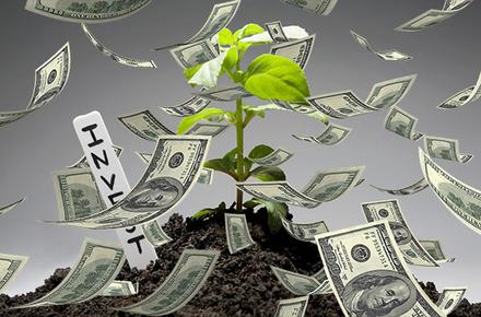 cde9dc16eb691fe4696832a71ed6c8c6 preview w440 h290 - За І півріччя іноземними інвесторами в економіку Житомирської області вкладено 10,2 млн доларів прямих інвестицій