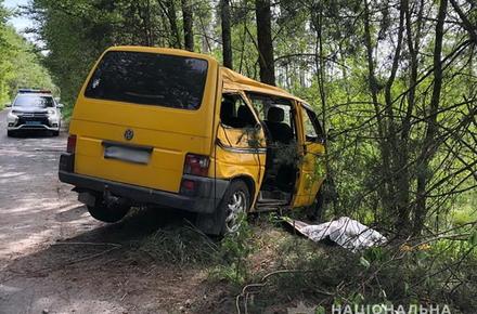 231b08e978e366a88719070cf82266c1 preview w440 h290 - У Житомирській області мікроавтобус з'їхав з дороги і врізався в дерево: один пасажир загинув, ще троє – в лікарні