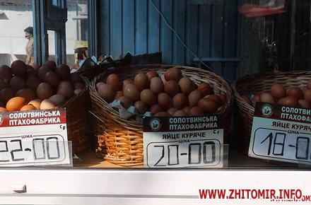 ea28353de552d2f30948c8c66a20db1f preview w440 h290 - У травні в Житомирській області значно подорожчали яйця, а м'ясо курей стало дешевшим, – статистика