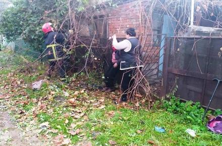 2f009b14feae675f32c4be0a6cc1f490 preview w440 h290 - У Коростені рятувальники звільнили з «пастки» жінку, яка вилізла на паркан та застрягла між деревами