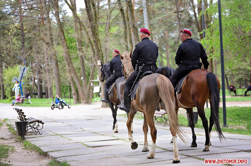 Конная полиция Житомир Украина