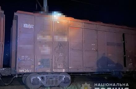 6ed31ad3a0545ff40688b34d141f41b2 preview w440 h290 - У Житомирській області на даху вантажного вагона потяга виявили обгоріле тіло 18-річного хлопця