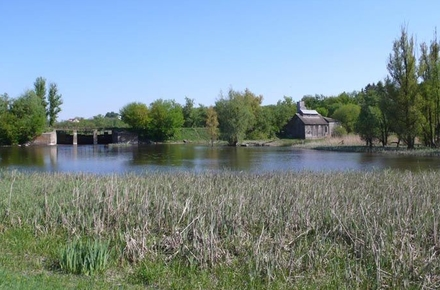 c66863d941159e2aa416a9b7009528e5 preview w440 h290 - На березі річки поблизу Житомира знайшли вбитим 28-річного чоловіка