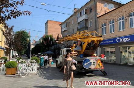 81442fd36c839da1a419e984c4141869 preview w440 h290 - На Михайлівській у Житомирі почали розвішувати кольорові парасольки