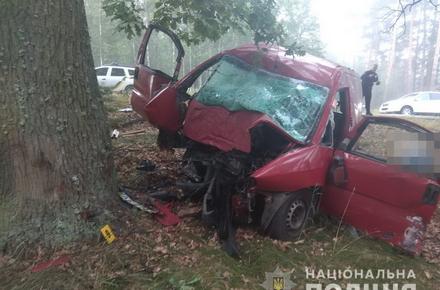 5151646ea7ebf438d1dcece22457aee7 preview w440 h290 - Подробиці ДТП у Житомирській області, де бус в'їхав у дерево: загиблою виявилася 23-річна дівчина, ще шестеро молодих людей у лікарні