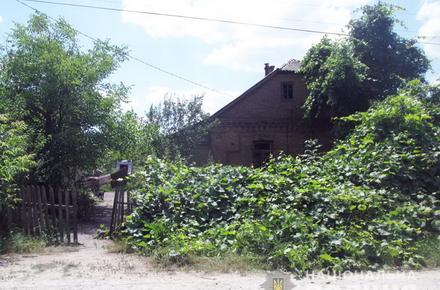 3c993cf1fb9e15020cf8eb41a987bd90 preview w440 h290 - У селі Житомирської області жінка вбила співмешканця, а поліції сказала, що він сам наштрикнувся на косу