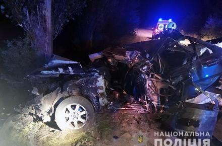 2795e2a3a0c7ea8d8eaf22bd3b3aa485 preview w440 h290 - Уночі в Житомирській області легковик врізався в дерево: двоє молодих людей потрапили до лікарні