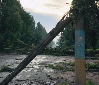 5e258ec012d13d93d86a6bb2255cd648 preview w440 h290 - За вечір рятувальники 9 разів виїжджали прибирати повалені дерева, 23 населених пункти Житомирської області досі без світла